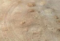 achados de siló Arqueólogos revelam ter encontrado vestígios do Tabernáculo em Siló
